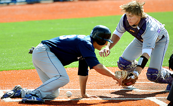 Maine's Joe Mercurio dives back to home plate after missing the base on his slide in.  Albany's catcher Ralph Keppler lost control of the ball and Mercurio safely tagged the base in the seventh inning of the game.  Maine beat Albany 4-2 in Sunday afternoon's game.   BANGOR DAILY NEWS PHOTO BY LINDA COAN O'KRESIK