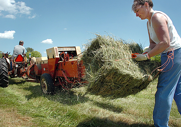 Ann Kenny and her husband, Mike, bale hay Monday, May 24, 2010 at one of their Orono fields. The couple began cutting hay last week, which Kenny said was two to three weeks ahead of schedule. &quotWe didn't make the first cut until August last year,&quot Kenny said because of the rain. BANGOR DAILY NEWS PHOTO BY BRIDGET BROWN