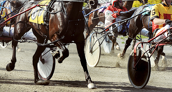 Harness Racing at the Hollywood Slots and Raceway at Bass Park in Bangor. BANGOR DAILY NEWS PHOTO BY GABOR DEGRE