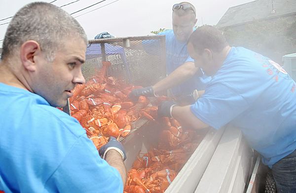 Andy Derochers (from left), Josh Cross and Ryan Morris, all local volunteers from Bank of America, get lobsters ready for transport to the Maine Food Tent after 12 minutes of steaming during opening day at the Maine Lobster Festival on Rockland's waterfront on Wednesday. Teh 62nd Maine Lobster Festival runs through Sunday.  BANGOR DAILY NEWS FILE PHOTO BY JOHN CLARKE RUSS