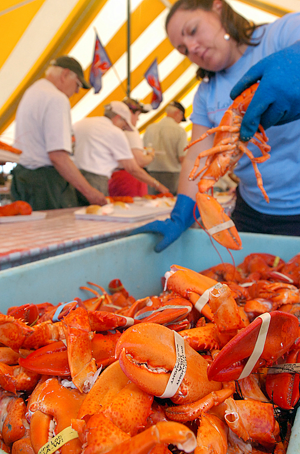 Jozlyn Noyes of Searsport serves lobster during last year's annual Maine Lobster Festival in Rockland. It was the first year Noyes volunteered at the festival, and she siad she definitely would do it again, because it was a lot of fun. BANGOR DAILY NEWS FILE PHOTO BY GABOR DEGRE