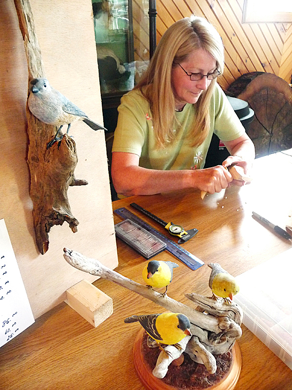 Patricia Lavallee of Alexander works on carving Maine birds Friday at the seventh annual Down East Birding Festival at Moosehorn National Wildlife Refuge at Baring. Alexander was one of several artists and experts that provided dozens of participants from across the country with birdwatching information and skills. The four-day birding festival provides an early summer economic boom to the Down East area.  BANGOR DAILY NEWS PHOTO BY SHARON KILEY MACK