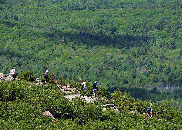 Visitors to Acadia National Park descend the North Ridge Trail of Cadillac Mountain on Friday, May 28, 2010.  BANGOR DAILY NEWS PHOTO BY KEVIN BENNETT