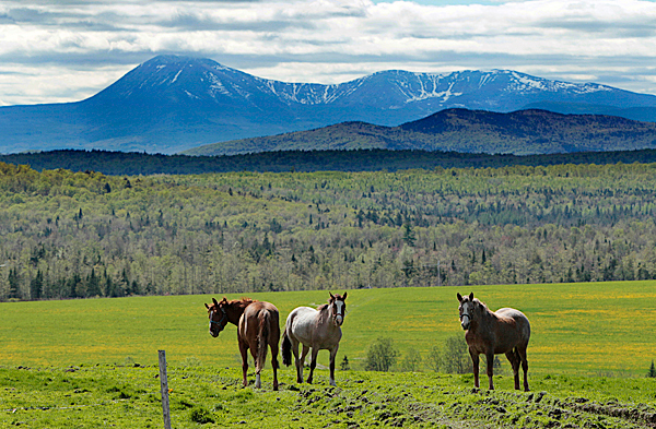 In this Friday, May 7, 2010 photo, Mount Katahdin, the northern terminus of the Appalachian Trail, looms on the horizon in this view from Ashland, Maine. The International Appalachian Trail begins near Mount Katahdin, the northern terminus of the Appalachian Trail, and continues through Canada's maritime provinces. A coalition of trail clubs is working to extend the trail even further by following the Appalachian mountain range into Europe. (AP Photo/Robert F. Bukaty)