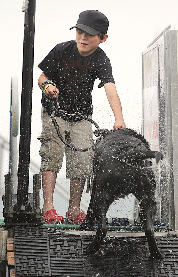 Chris Matheson, of Tenants Harbor gets a bath from his dog, Jake, as the lab walked out of the pool after his second run of the speed retrieve finals of the DockDogs competition on Sunday, June 12, 2010 at Rockland's Buoy Park.   BANGOR DAILY NEWS PHOTO BY KEVIN BENNETT