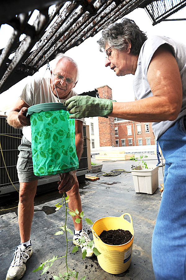 Charlie Taylor, left, and Gayle Crowley, right, pot an upside down tomato plant on the roof top of the Hammond Street Senior Center on Saturday, June 12, 2010. The pair are in competition for a $5,000 online grant to expand the garden.  BANGOR DAILY NEWS PHOTO BY KEVIN BENNETT