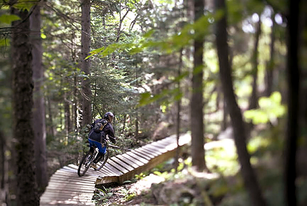 Mountain biker.  For Strout/Outdoor pages.