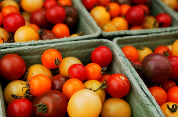 Cherry tomatoes were among the many items for sale at Brae Maple Farm's booth at the Common Ground Fair's farmers market. (BANGOR DAILY NEWS PHOTO BY BRIDGET BROWN)