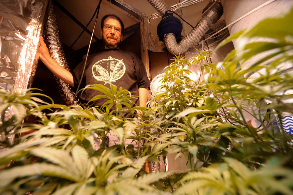 In a growing room in his Pittsfield home, James P. Fowler, 44, looks over some of his medical marijuana crop that he is growing for himself and three other patients. Fowler's home was riaded by drug agents on March19, and he seeks compensation from the state. Since the incident, Fowler said he feels as if his neighbors see him as a criminal.  (BANGOR DAILY NEWS PHOTO BY JOHN CLARKE RUSS)  CAPTION  In a growing room in his home in Pittsfield, Jim Fowler looks over some of his medical marijuana crop that he is growing for himself and several area patients. In March of this year, Fowler was busted by the DEA for growing marijuana plants, most of which were confiscated. Fowler who grows marijuana to alleviate symptoms of his degenerative disc disease, said he was unjustly busted, because he has permission to grown his own medical marijuana and is growing for several others. (Bangor Daily News/John Clarke Russ)