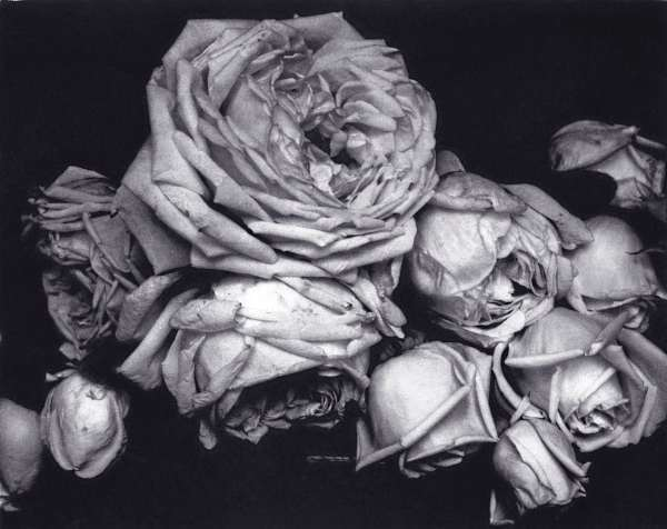Edward Steichen (United States, 1879-1973)
