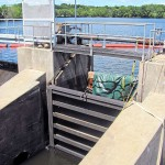 Newport seeks dam solution