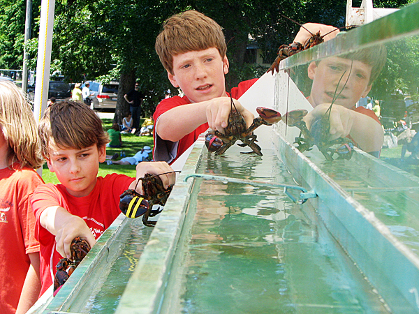 Simon Hulbert, 12 and Grady Dobbs, 13, both of Bar Harbor, prepare to drop contestants into their lanes during the Mount Desert Island YMCA's annual lobster races on Saturday. The fundraiser event is held every year in the Bar Harbor athletic fields on Park Street following the local Fourth of July parade.
