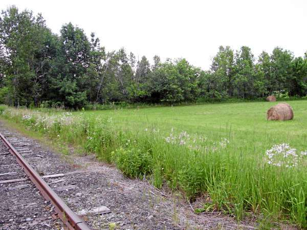 This scenic pasture land in Knox, Maine, is one of the sights people can see if they do a rail-bike excursion on the former Belfast & Moosehead Lake Railroad tracks. Trips will be offered this summer through the Brooks Preservation Society. (Abigail Curtis/Bangor Daily News).