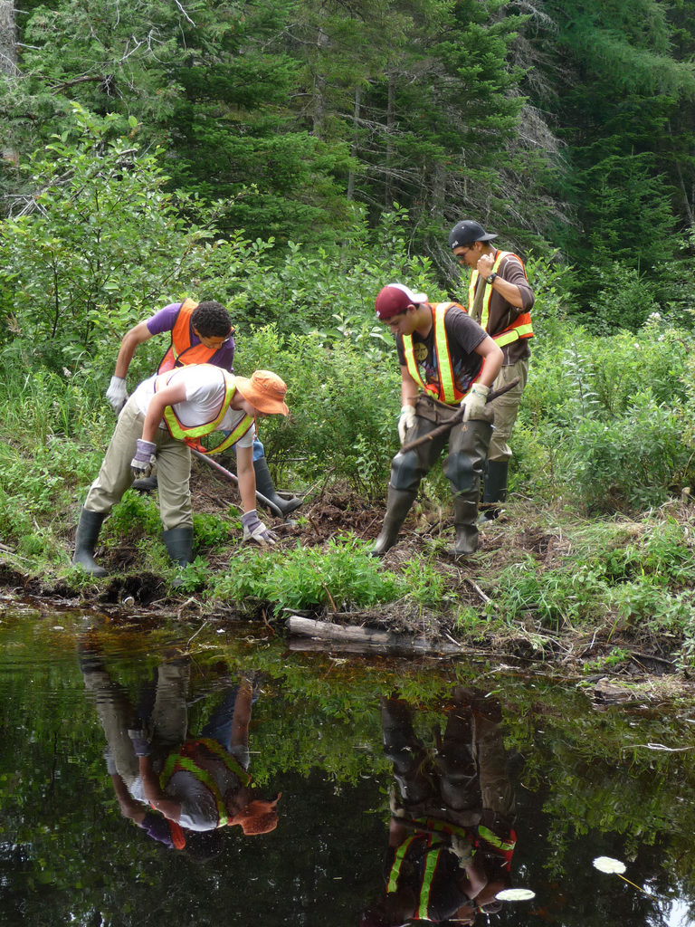 Four high school students are working as interns this summer on a number of salmon habitat restoration projects north of Route 9 in Washington County. Cecil Cates, Jonah Baskerville and Nathanael Koenig, all of Eastport, work with Daniel Bender, of Pennsylvania and Eastport, on investigating whether an old beaver dam obstructing Humphrey Brook in Twp. 37 is actually built on top of an old logging dam. The interns are working with Project SHARE and a consortium of federal and state agencies to restore salmon and other sea run fish habitat by removing obstructions, such as old logging dams, and replacing standard culverts which do not allow passage with open-bottomed culverts. Project SHARE received $1.7 million in federal stimulus funds to reopen the fish habitat in Washington County. BANGOR DAILY NEWS PHOTO BY SHARON KILEY MACK