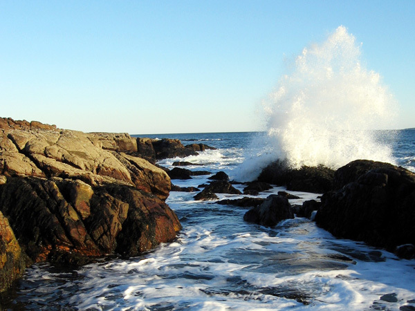 A wave crashes into the rocks at Ship Harbor at Acadia National Park. (Photo courtesy of NPS/Todd M. Edgar)