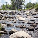 Brewer to remove mill dam to help fish spawn