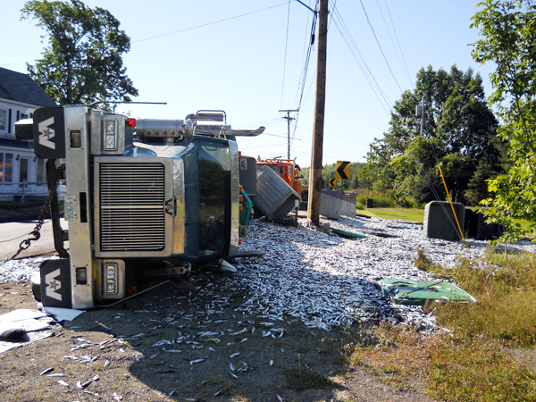 A truck lies on its side after crashing and spilling its load of herring all over everywhere on Route 189 in Whiting, Maine, on Saturday morning. (Photo courtesy of Robin McPhail)