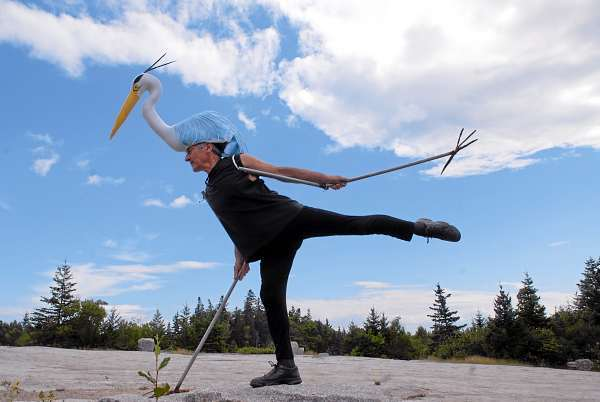 Attired as a blue heron, Felix Blaska stretches his appendages atop a rock during a rehearsal for &quotQ2&quot at Settlement Quarry in Stonington Thursday afternoon, July 22, 2010. (Bangor Daily News/John Clarke Russ)