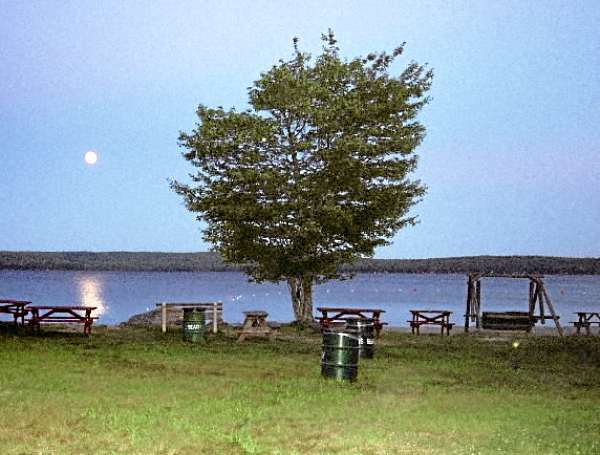 taken in the middle on Morgan's Beach in July 2006 at night.  Notice the full moon in the background. Julie Nadeau photo. w/STROUT