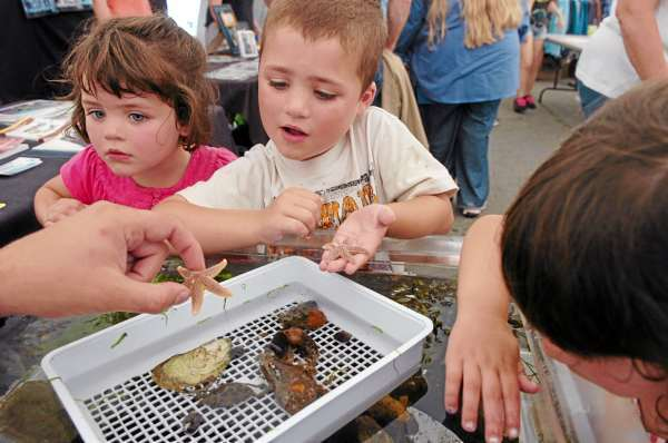 Children including (from left) Lucy Ricker, 4, her brother, Devin Ricker, 5, both of South Portland, and Madison Roach, 4, of Scarborough check out the sea creatures in a touch tank at the 63rd annual Maine Lobster Festival in Rockland on Wednesday, Aug. 4, 2010. The festival continues through the weekend at Harbor Park. (Bangor Daily News/Bridget Brown)