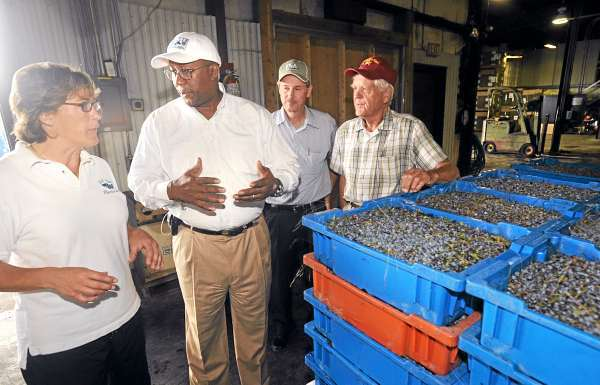 U.S. Trade Representative  Ron Kirk (second from left) speaks with Annie Allen (left) while he visited the G.M. Allen & Son blueberry farm and processing center in Orland Thursday, August 5, 2010.  Also pictured are co-owner Kermit Allen (right) and Don Todd of the Farm Service Agency (second right). (Bangor Daily News/Gabor Degre)