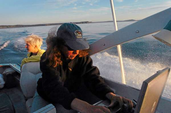 Research scientist Amy Knowlton records sightings of marine life in the Bay of Fundy near Grand Manan at dawn Thursday. In the background is research assistant Candace vorutskie.  (BANGOR DAILY NEWS PHOTO BY BRIDGET BROWN) whales  CAPTION  New England Aquarium research scientist Amy Knowlton (center) records sightings of marine life in the Bay of Fundy near Grand Manan (right) on Thursday, Aug. 20, 2009 at dawn. Knowlton said that 75 percent of the North Atlantic right whale population have been entangled in their lifetime and about 10 to 15 percent are entangled each year. Besides reducing entanglement in fishing ropes and gear, whale researchers are trying to reduce the number of ship strikes which also threaten the population. In the background is research assistant Candace Borutskie. (Bangor Daily News/Bridget Brown)