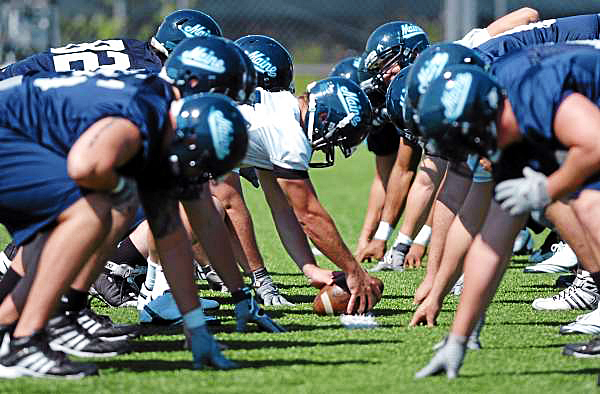 The Maine Black Bears run through drills during practice at Morse Field in Orono on Sunday, Aug. 8, 2010. The Bears first home game of the season is Sept. 2 versus Albany. (Bangor Daily News/Bridget Brown)