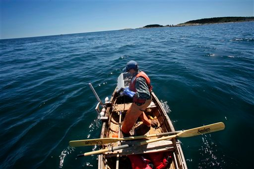 In this Tuesday, July 27, 2010 photo, lobsterman Nat Hussey hauls a trap while fishing off Matinicus Island, Maine.  Hussey hauls as many as 75 traps a day from his rowboat.  &quotIt's the hardest work I've ever done,&quot he says. (AP Photo/Robert F. Bukaty)