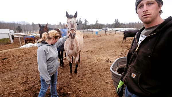 Brett Ingraham (right) and his wife, Alexis (left) run Fair Play Farm, a horse farm in Clinton. The Ingrahams have been accused of being inhumane to the animals on their farm. They say they have horses that are in bad condition, but that it is because they are willing to take in animals that may be sick or neglected. They nurse them back to health. &quotTheer is no problem here. Anyone who wants to come and see for themwselves is welcome. We have nothing to hide,&quot Brett Ingraham said.  (BANGOR DAILY NEWS PHOTO BY GABOR DEGRE)  CAPTION  Brett Ingraham (right) and his wife Alexis (left) run Fair Play Farm a horse farm in Clinton.  The Ingrahams have been accused of being inhumane to the animals on their farm.  They say that they do have horses that are in bad condition, but that is because they are willing to take in animals that may be sick or have been neglected and they nurse them back to health. &quotThere is no problem here.  Anyone who wants to come and see for themselves is welcomed. We have nothing to hide.&quot Brett said. (Bangor Daily News/Gabor Degre)