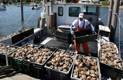 In this July 2, 2010 photo, Yuliyan Bodurov unloads containers of conch from the Peggy B, in Wychmere Harbor in Harwich, Mass. Ground fishing has virtually disappeared in this small port, and new fishing rules enacted in May have fishermen at New England's major ports worried their historic fishing communities could fade away as well. (AP Photo/Julia Cumes)