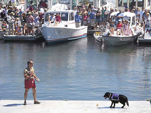 Ron Staschak of Rockport and his dog Hazel compete Sunday in the World Championship Boatyard Dog competition at the annual Maine Boats, Homes & Harbors Show on Rockland's waterfront. (Bangor Daily News Photo by Bill Trotter)