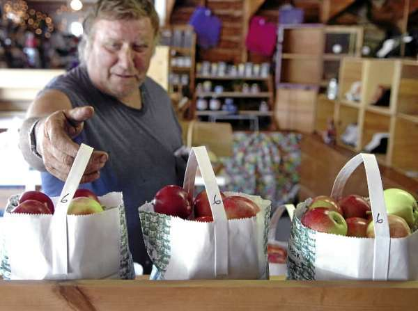 Harland Gamble of Prospect picks up a bag of apples as an afternoon snack at Hillcrest Orchards' farmstand in Winterport on Friday, Aug. 13, 2010. The stand opened last week for the season. (Bangor Daily News/Bridget Brown)