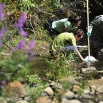 Stimulus funds aimed to clean up watersheds