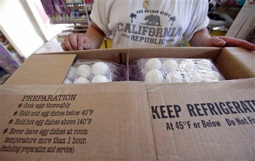 Safety instructions are printed on a box containing fresh eggs at a local market Wednesday, Aug. 18, 2010, in Los Angeles. Hundreds of people have been sickened in a salmonella outbreak linked to eggs in three states and possibly more. (AP Photo/Damian Dovarganes)
