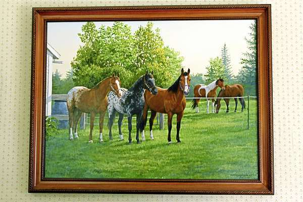 A painting by Clayton Persus Weirs hangs in Roice Saunders' living room as a gift from his daughters. The painting is of Roice's favorite horses. The Appaloosa Scooter Bus Moon (far left) raced in Suffolk Downs in 1981. A race horse's career ends at around 13 years old. Roice bought Scooter when he was being boarded after retirement. Scooter died at 37 years old. Saunders' current horse, Mr. T, stands third from the left. Buy Photo