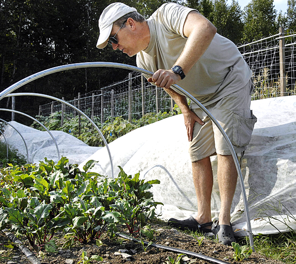 The 'hoop' system is easy to use and transport. Lipinsky covers the framework in the winter with a greenhouse plastic and a cover cloth that still allows the sunlight to pass but adds several degrees of protection. Here he looks over some beets that were recently planted at his farm in Newburgh, on Wednesday. Buy Photo