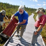 Explore the Orono Bog on 4,200-foot boardwalk