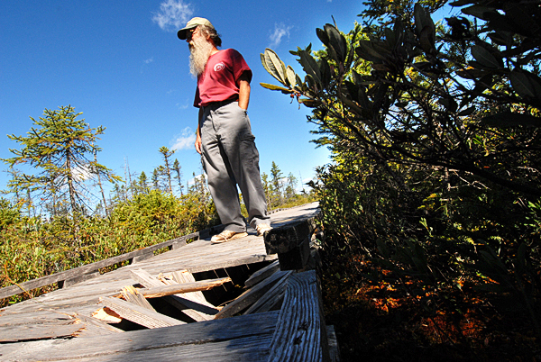 Orono Bog Boardwalk director Jim Bird looks over the damage, including these trampled hemlock planks on the boardwalk after learning Monday morning that various sections the boardwalk were vandalized sometime after it closed for the evening Sunday.  BANGOR DAILY NEWS PHOTO BY JOHN CLARKE RUSS