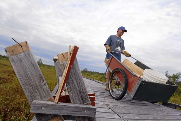 Paul Markson of Orono uses a utility cart to deliver building materials to fellow volunteers who came out Tuesday to repair Monday's vandalism on the boardwalk. The vandals uprooted benches (like the one shown on the left), interpretive stations and smashed other parts of the wood infrastructure, including the maintenance cabin. (Bangor Daily News/John Clarke Russ)