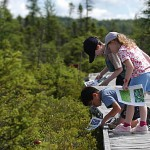 Favorite places in Maine: Bangor City Forest