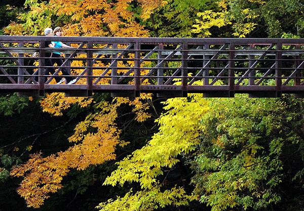 Valerie Kitchen (left) and Amy Pozzy walk over the pedestrian footbridge which spans the Kenduskeag Stream in Bangor on Tuesday, Sept. 28, 2010 as the fall foliage begins to show its colors. Both Kitchen and Pozzy are instructors at Valance Pilates Studio on Main Street in downtown Bangor. (Bangor Daily News/Bridget Brown)