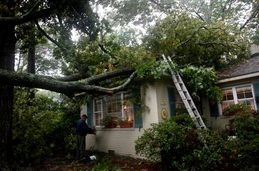 Bill Harrell replaces one of his wife's window boxes next to a downed tree at his home on Buffalo Ave. in Norfolk, Va., on Thursday, Sept. 30, 2010. The tree snapped Thursday morning but didn't break through the roof. (AP Photo/The Virginian-Pilot, Preston Gannaway)