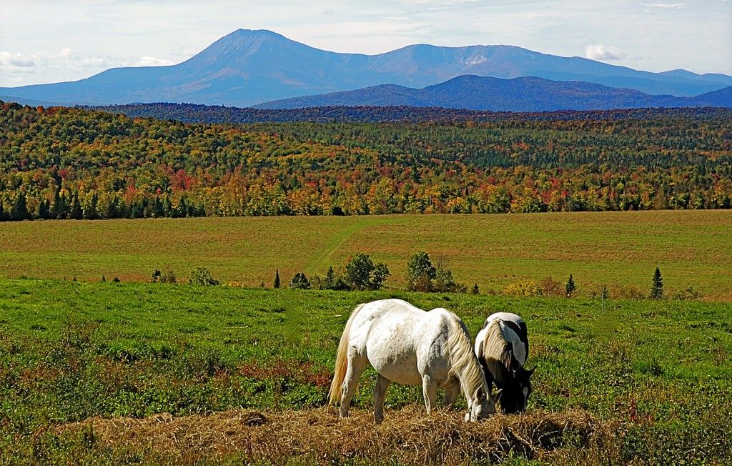 A fall scene from Patten, looking toward Katahdin and other mountains near Baxter State Park. (Julia Bayly photo)