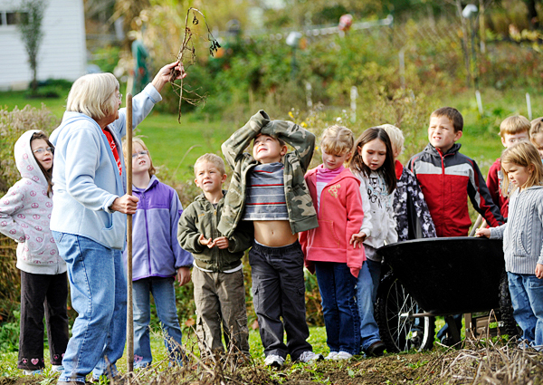 Barbara Day, second from left , shows a red potato stalk to Hartland Consolidated School kindergartners and first graders during their visit to Day's backyard garden in Hartland Monday.  Students from the school visited Mrs. Day's garden and were each treated to a tour and to a bag full of items they helped harvest there.  The first graders helped plant Day's garden last spring when they were kindergartners. (Bangor Daily News/John Clarke Russ)