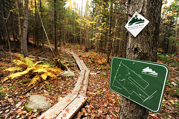 New bog bridges and signs are a few of the recent features added to trails in the Northeast Penjajaowoc Preserve in Bangor. Maps of the trail and stations are now available trailside. Image made on Wednesday, October 6, 2010. (Bangor Daily News/Kevin Bennett)