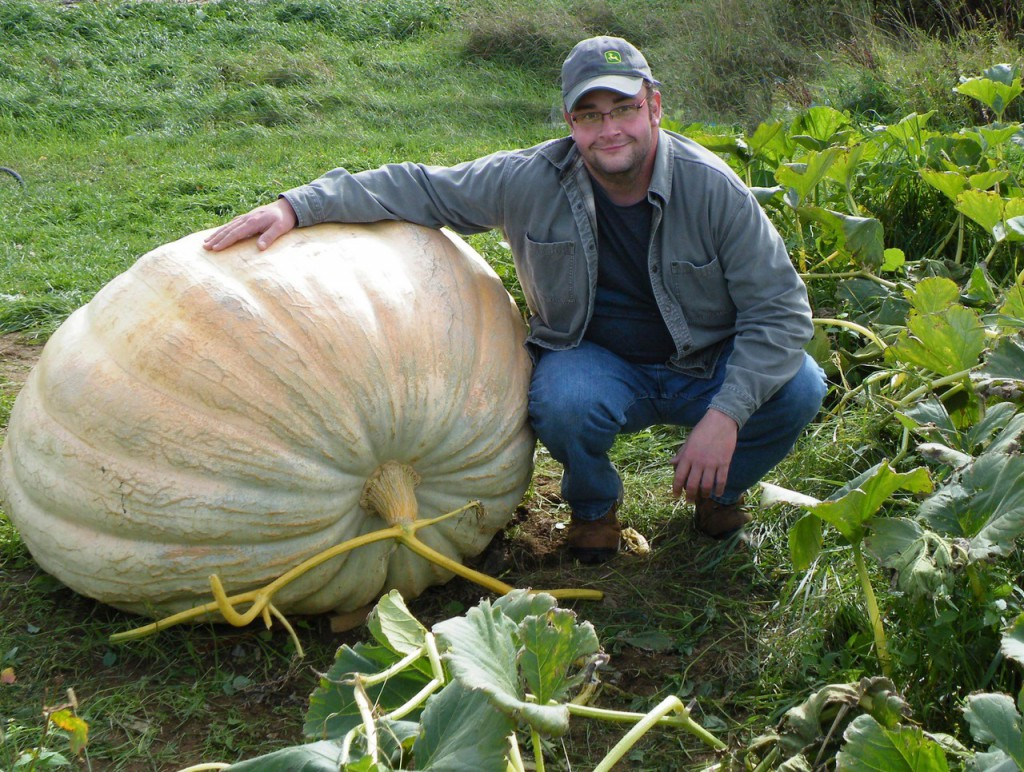 Ben Dodge of Ludlow grew this 720-pound pumpkin in his garden. He saved his seeds from the pumpkin and each seed has the genetics to grow to 1,000-plus pounds, he said. HOULTON PIONEER TIMES PHOTO BY GLORIA AUSTIN