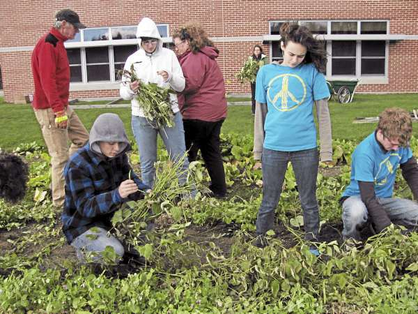 Katie Norsworthy, standing, works alongside classmates including Mert Danna (l), 16, of Jackson on Friday, Oct. 22 at Mount View High School in Thorndike. The students are members of the club PeaceJam and were working to put their gardens to bed for the winter. (Abigail Curtis/BDN)