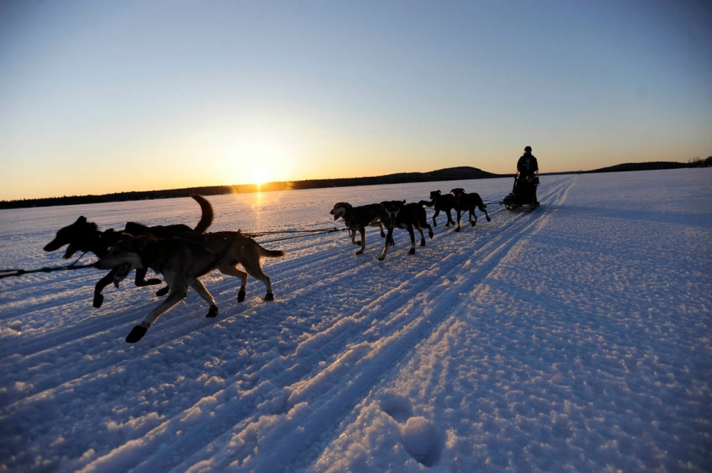 Musher Christine Richardson of Canaan, N.H., and her dogs approach the Portage Lake checkpoint for the Can-Am Crown 250 shortly before sundown Saturday.  (BANGOR DAILY NEWS PHOTO BY JOHN CLARKE RUSS)  CAPTION  Musher Christine RIchardson of Canaan, NH and her dogs approach the Portage Lake checkpoint in Portage Lake, Maine for the Can-Am Crown 250 shortly before sundown Saturday, March 6, 2010. (Bangor Daily News/John Clarke Russ)