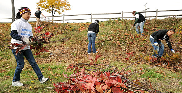 Mitchell scholars from the University of Maine and Husson University clean up brush and garbage along the Bangor Waterfront Saturday monrning. Theye were among the about 50 Mitchell scholars who participated in the Bangor Beautification Day from the University of Maine, Husson University and Eastern Maine Community College.  Three crews worked at diferent locations in the city to clean up public parks. (Bangor Daily News/Gabor Degre)