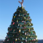 Jonesport-Beals eyes record for lobster trap tree